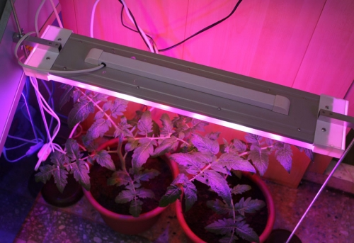 Подсветка для растений своими руками 34