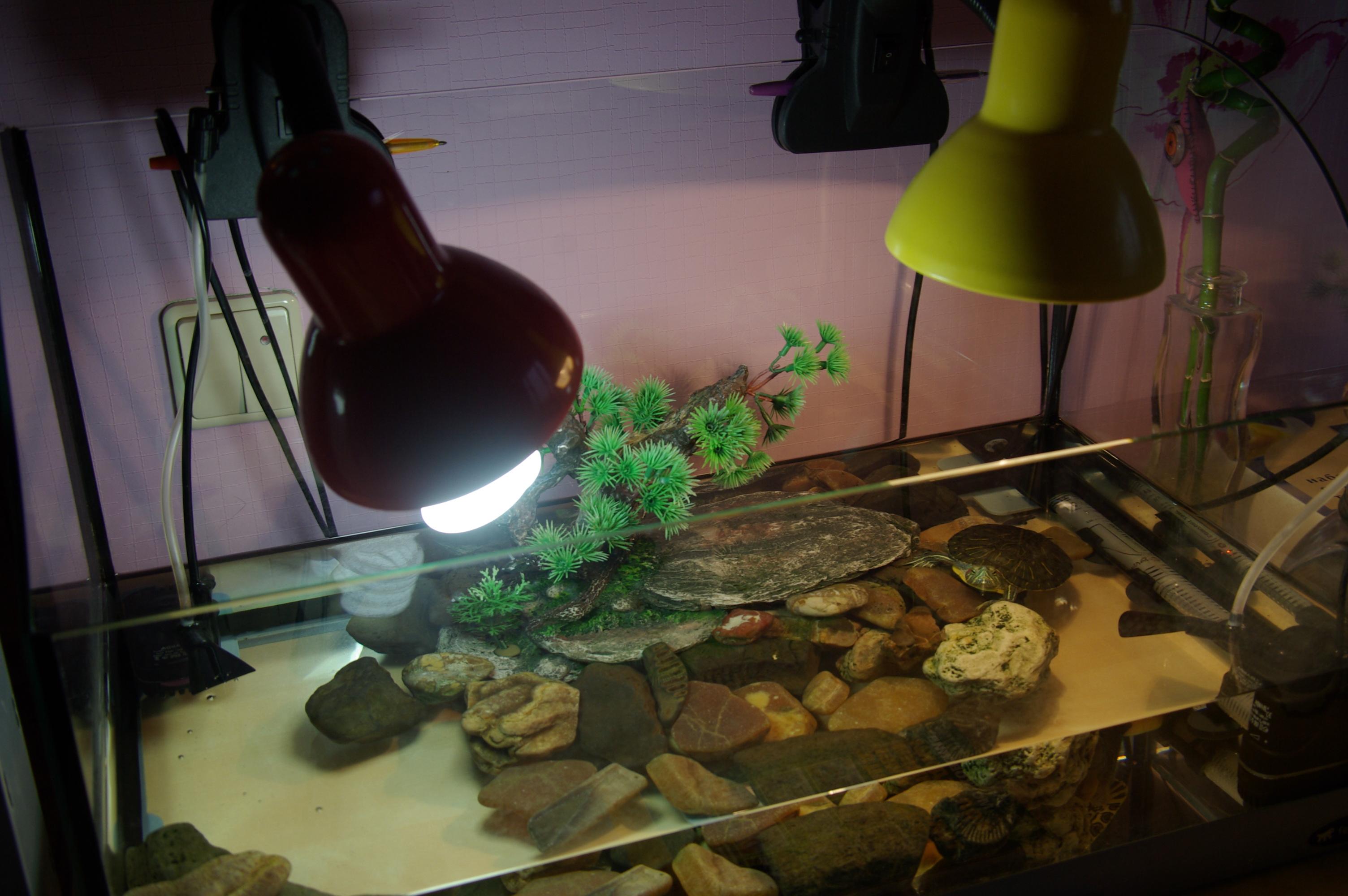 Ультрафиолетовая лампа для черепах своими руками